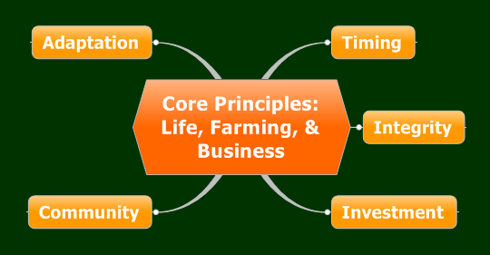 Core-Principles-Success-with-CRM