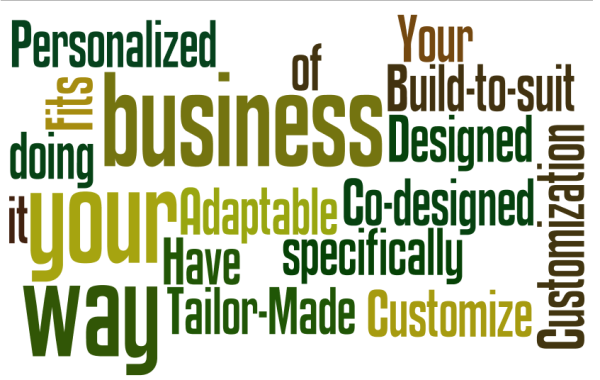 CRM-Customization-Advantage