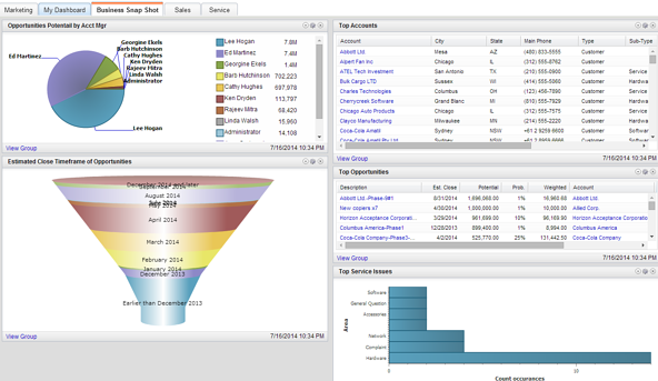 Infor_CRM_Business-snapshot-DashboardSaleslogix-81
