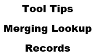 Tool-tips-Merging-Lookup-records-bpmonline-success-with-crm-2